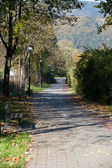 Alley for a relaxing autumn walk — Stock Photo