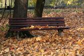 空坐在秋天的公园长椅 — 图库照片