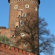 Wawel Hill and the Royal Castle in Krakow - 图库照片