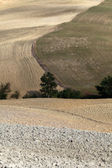 The landscape of the Tuscany. Italy — Stock Photo