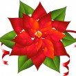 Poinsettia — Stock Vector