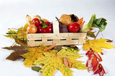 Bunch of autumn vegetables — Stock Photo