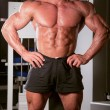 Stock Photo: Bodybuilder