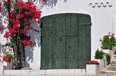 Closed door — Stock Photo