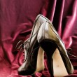 Female leather shoe — Stock Photo #7416528