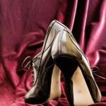 Female leather shoe — Stock Photo #7416528