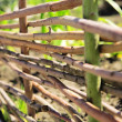 Fence from woodenss — Stock Photo #7416575