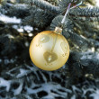 Christmas decorations on the frozen branches — Stock Photo