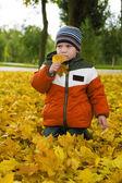 Bebé niño y amarillo otoño — Foto de Stock