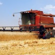 Harvester in the field — Stock Photo