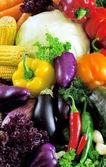культур различных овощей — Стоковое фото