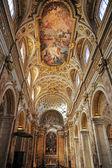 Saint louis della francese — Foto Stock