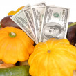 Stock Photo: Vegetables and money are isolated on white