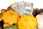 Vegetables and money are isolated on the white — Stock Photo