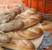 Loafs of browned bread with a wheat twig — Stock Photo