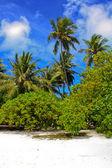 EXTREME PARADISE. Tropical beach — Stock Photo