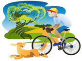 Irish Setter and cyclist — Stock Vector