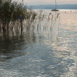Stockfoto: Low Light on Lake Starnberg