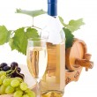 White wine — Foto Stock