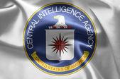 Merkezi istihbarat ajansı — Stok fotoğraf