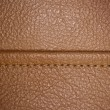 Horizontal stitched leather background. — Stock Photo