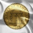The emblem of the State of Georgia — Stock Photo