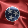 State of Tennessee — Stock Photo #7570953
