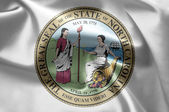 The emblem of the State of North Carolina — Foto de Stock