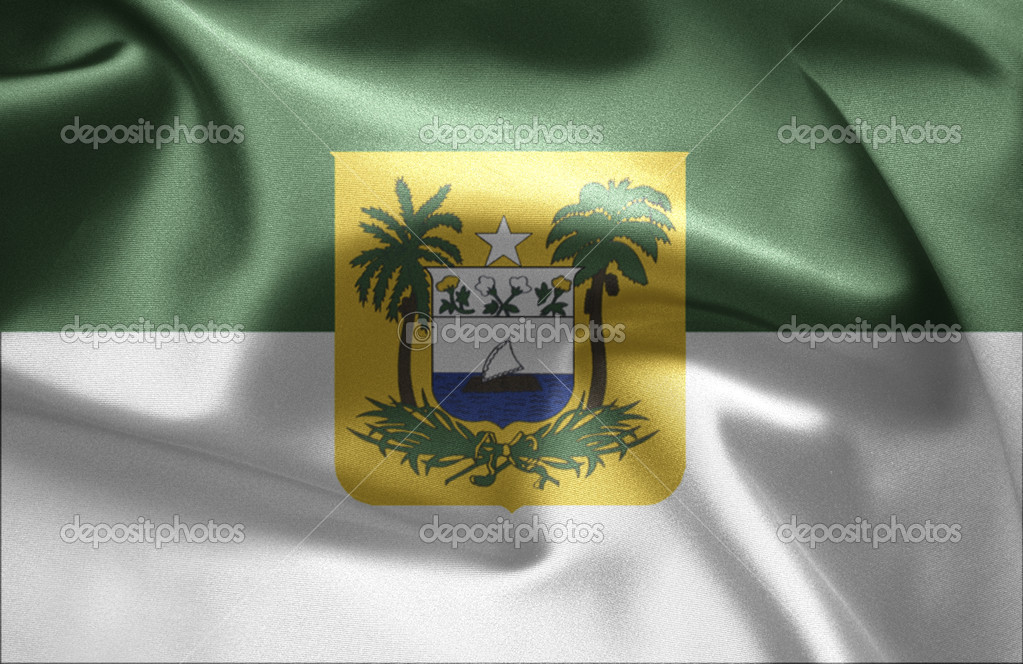 Flag of Brazil (Rio Grande do Norte) — Stock Photo #7610654