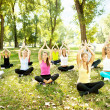 Group of doing yoga outdoor — Stock Photo #6836179