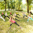 Aerobics class in park - Stock Photo