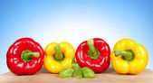 Colorful fresh mixed bell peppers — Stock Photo