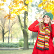Young beautiful girl  in autumn park — Stock Photo