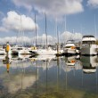Marina at Granville Island Vancouver BC - Stock Photo