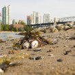 Low Tide at Vanier Park Beach in Vancouver BC - Stock Photo