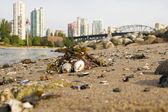 Low Tide at Vanier Park Beach in Vancouver BC — Stock Photo