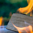 Royalty-Free Stock Photo: Hot fire burning