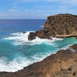 View of the coast near Halona Beach Cove in Hawaii - 图库照片