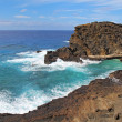 View of the coast near Halona Beach Cove in Hawaii - Stockfoto