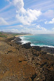 View of Sandy Beach Park from the Halona Blowhole in Hawaii vert — Stock Photo