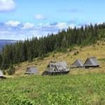Traditional Mountain Village In Transylvania,Romania — Stock Photo