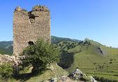 Coltesti fortress-detail — Stock Photo