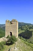 Coltesti fortress — Stock Photo