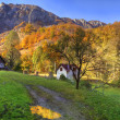Stock Photo: Rural autumn landscape