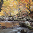 Autumn river — Stock Photo #6814875
