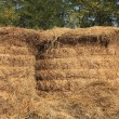 Royalty-Free Stock Photo: Haystacks