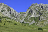 Trascau Mountains — Foto Stock