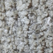 Stock Photo: Salt wall abstract