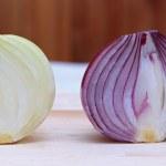 Onions — Stock Photo #7067300