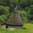 Traditional Transylvanian house - Stock Photo